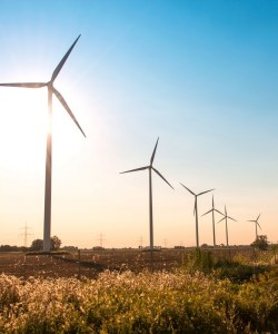867: One and a half windfarm consents